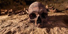 Ein Schädel liegt auf der Erde, im Hintergrund sind Knochen zu erkennen.