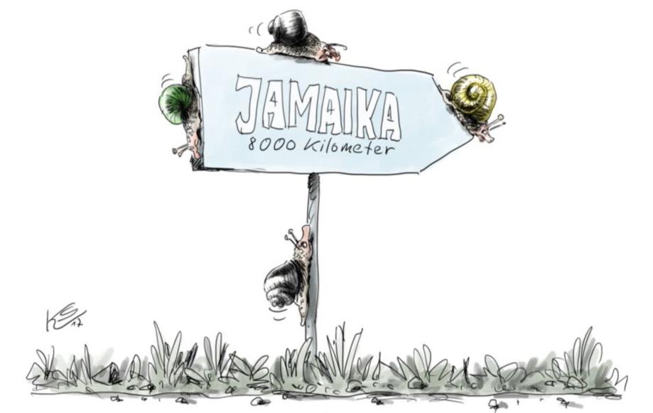 """Karikatur mit einem Schild, auf dem steht """"Jamaika 8000 Kilomenter"""" und Schildkröten kriechen."""