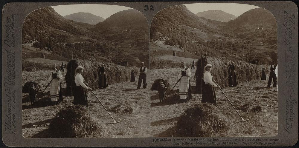 Landarbeiter und Landarbeiterinnen 1905, auf einem Schwarzweiß-Bild
