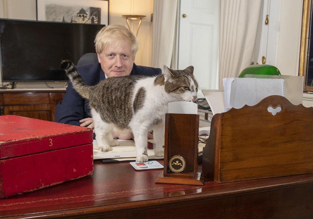 Boris Johnson sitzt hinter seinem Schreibtisch, auf dem eine Katze steht.