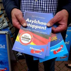 Werbebroschüre der AfD zur Asylpolitik