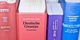 Bücher mit 'Gesetzestexten
