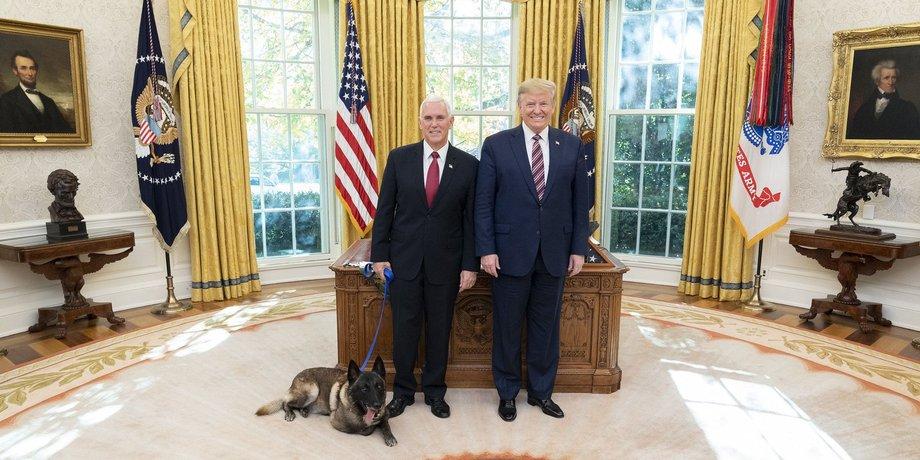 Donald Trump steht gemeinsam mit Mike Pence vor seinem Schreibtisch im Oval Office. Neben Pence liegt ein Malinois, ein belgischer Schäferhund, auf dem Boden.