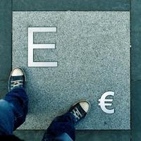Euro in Stein