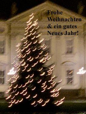 Ein Weihnachtsbaum etwas unscharf vor einem schloßartigen Gebäude bei Nacht.