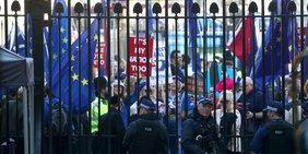 Protest hinter dem Zaun gegen den Brexit