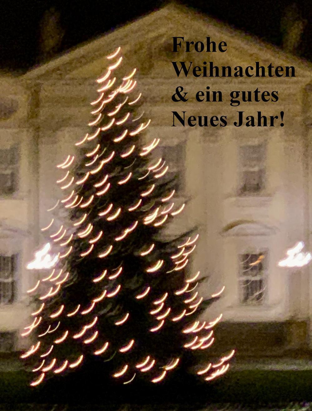 Ein Weihnachtsbaum etwas unscharf vor einem schloßartigen Gebäude.