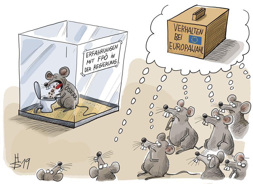 """Karikatur von einer Maus, auf der Österreich steht, in einem Glaskassten. Sie übergibt sich in eine Toilette, während außerhalb viele Mäuse zuschauen und über ihnen die Gedankenblase steht """"Verhalten bei Europa-Wahl?"""""""