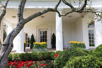 Blumen vor dem Büro des Präsidenten.